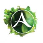 ArcheAge(アーキエイジ)のオンラインゲーム体験記